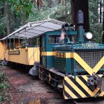 This is our chariot that took us through the redwoods.